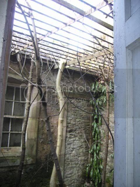 eastendhouse159.jpg