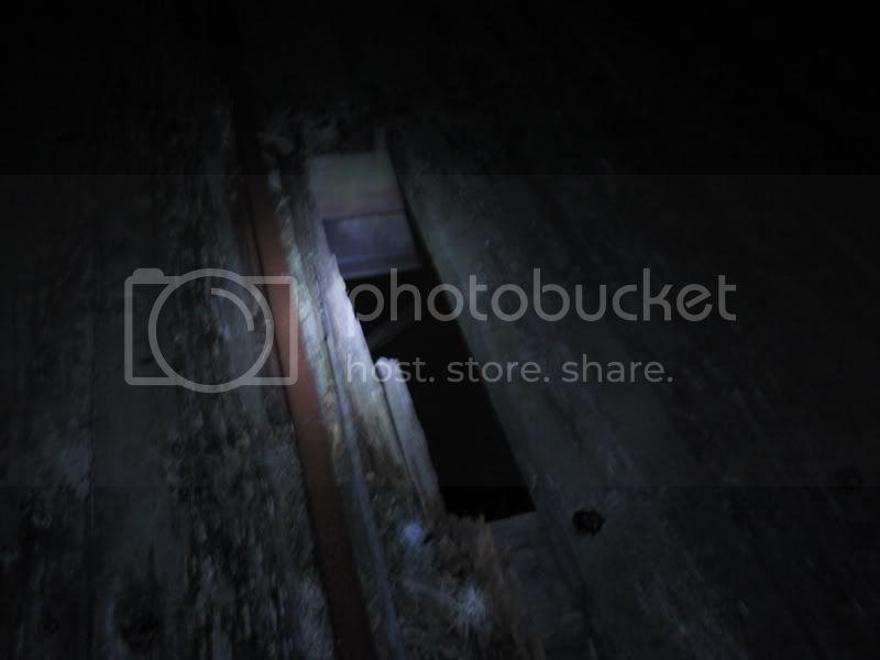 Photo450.jpg
