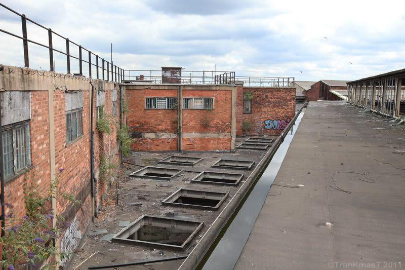 Rooftop2PB.jpg