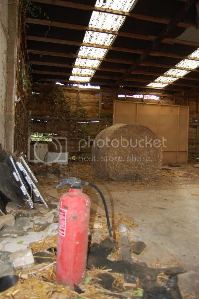 shirehorsecentre019.jpg